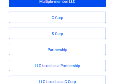Types of corporations in USA